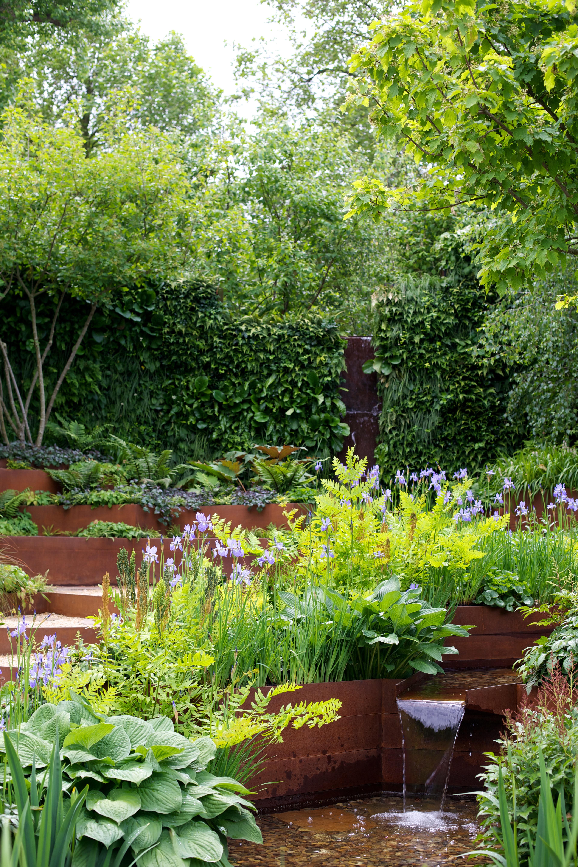Rhs chelsea flower show 2014 laura howell - Chelsea garden show ...