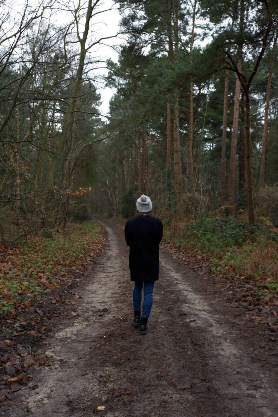 Winter Walks, Laura Howell